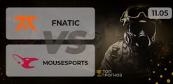 fnatic — mousesports: прогноз на матч 11.05.2021