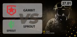Gambit — Sprout: прогноз на матч 27.01.2021