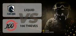 Liquid — 100 Thieves: прогноз на матч 30.05.2020