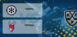 Сибирь – Торпедо: прогноз на матч 02.10.2020